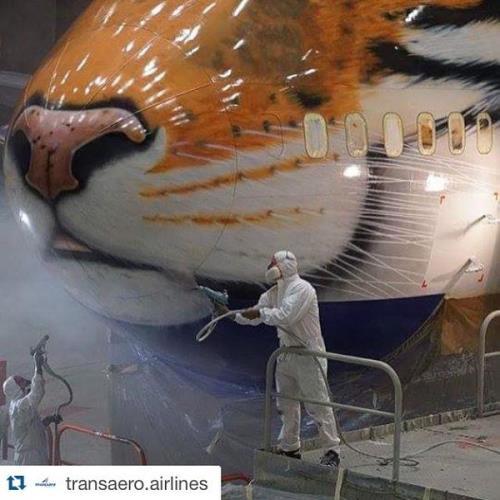 Foto: Transaero Airlines